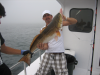 Bottom Fishing Charters near Orange Beach, AL