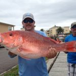 Red Snapper Fishing in the Gulf of Mexico