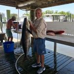 Cobia Fishing Charters in Orange Beach AL