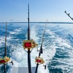 Fishing Rods on a Charter in Alabama